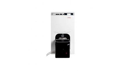 Комбинированный чугунный газовый котел Protherm Бизон NL